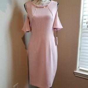NWT Ivanka Trump Dress Size 8